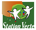 statyion-verte